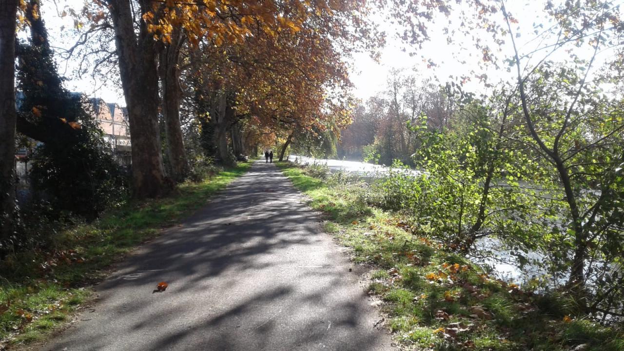 Canal latéral octobre 2020 (1)