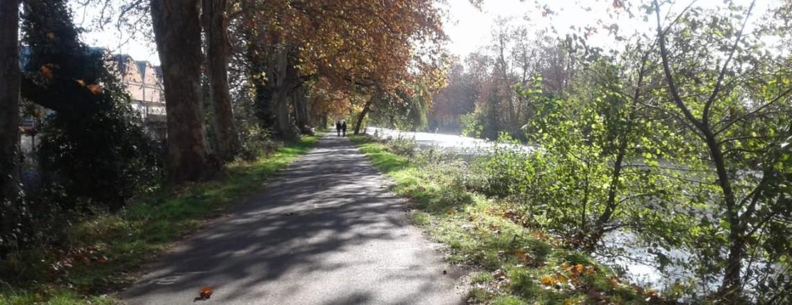 Deuxième mandat municipal: les habitants demandent un véritable Plan de valorisation du Canal Latéral.
